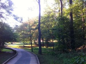 Wilshire Trails: My Favorite Running Spot!